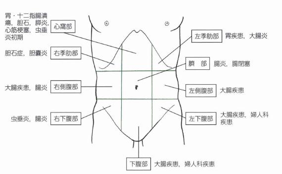 腹痛の部位の違いは?季肋部、心窩部はどこ?|医学的見地から